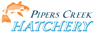 Pipers Creek Hatchery